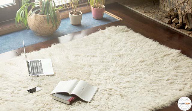 Cukup Menggelar Karpet, Ruangan Rumah yang Membosankan Jadi Tampil Beda