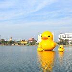 Australia Hingga Korea Didatangi si Gemas Giant Yellow Duck. Kini, Giliran Cikarang!