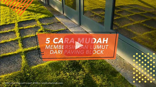 Anti Licin! Ini 5 Cara Cepat Membersihkan Lumut Paving Block