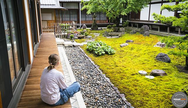 Taman Belakang Rumah dengan Nuansa Batu (9 Gambar Inspirasi Desain)